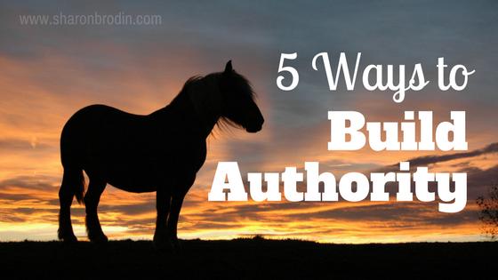 ways to build authority