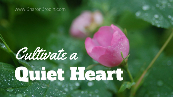 cultivate a quiet heart