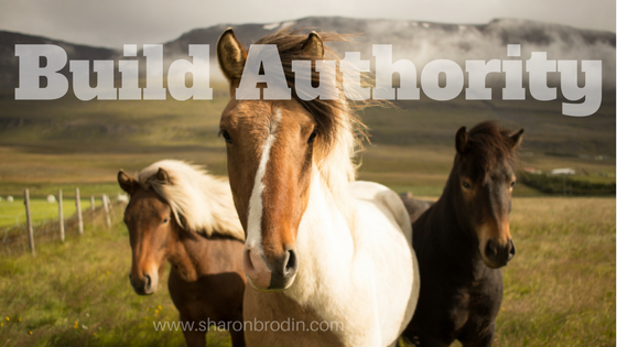 build authority header image