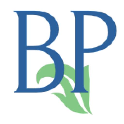 Brodin Press logo #2